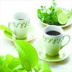 霍山黄芽茶叶广告配音
