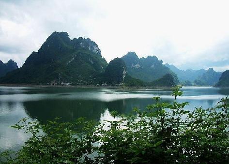 上林县国税工作纪实专题文案