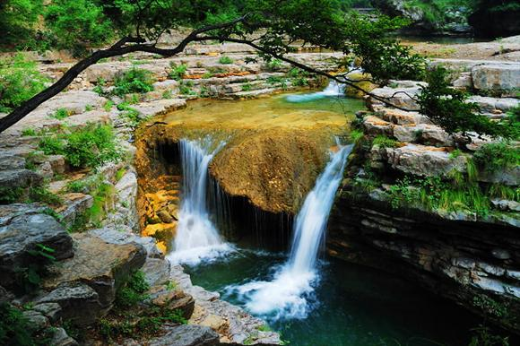 蟒河自然保护区宣传片文案