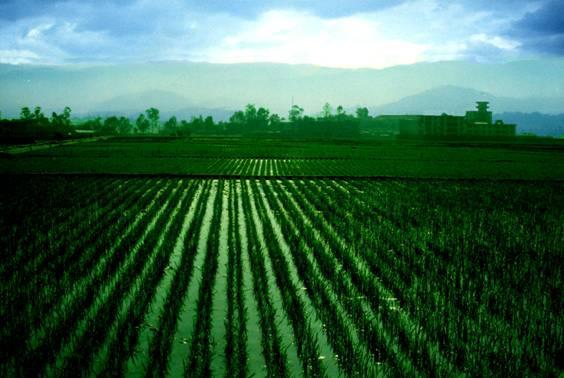 农业发展解说词配音之宣州农业专题片
