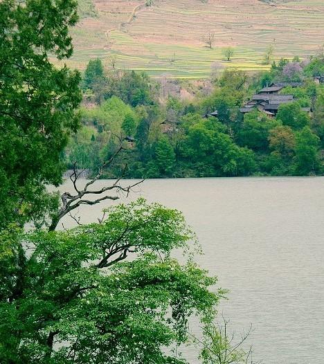 漫步在湖边,垂钓在柳荫树下,浅饮慢酌在农家小院,那绿色的湖水浸满