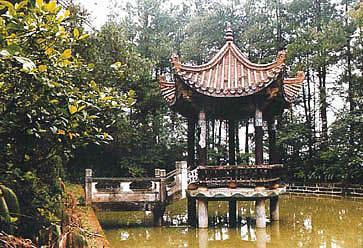良性的生态环境,催生了绿色产业链的蓬勃发展,千岛湖国家森林公园